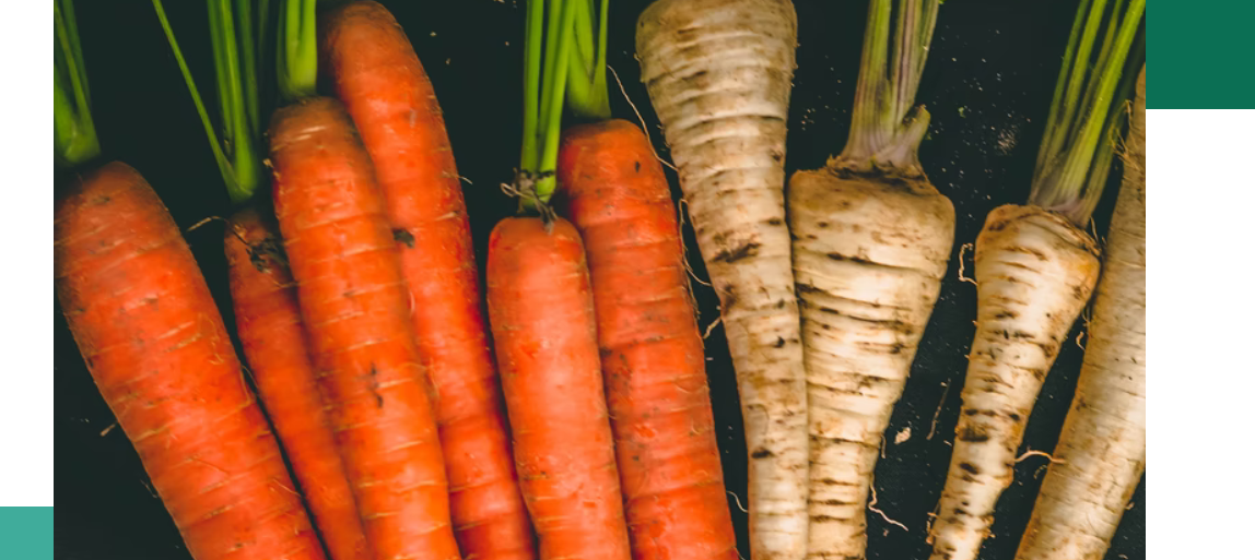 Skład karmy warzywa