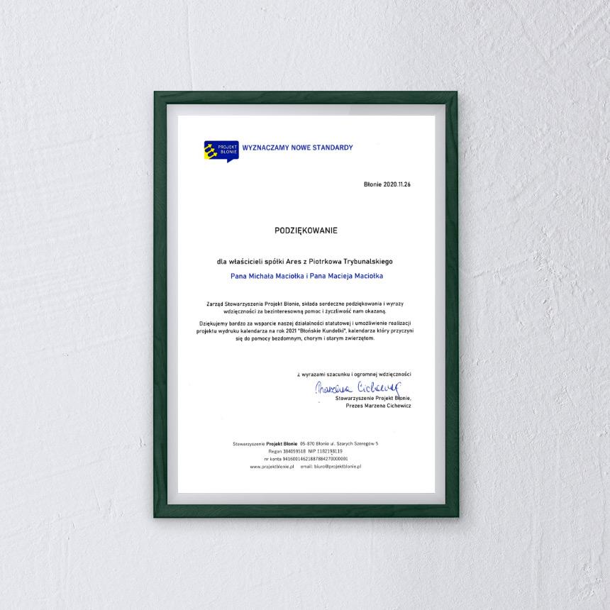 Ares Dyplom Projekt Błonie